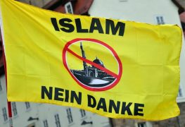 AfD demonstriert in Erfurt
