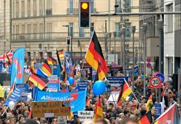 afd-demonstration-berlin-asyl