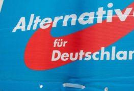 wahlplakat-der-partei-alternative-fuer-deutschland