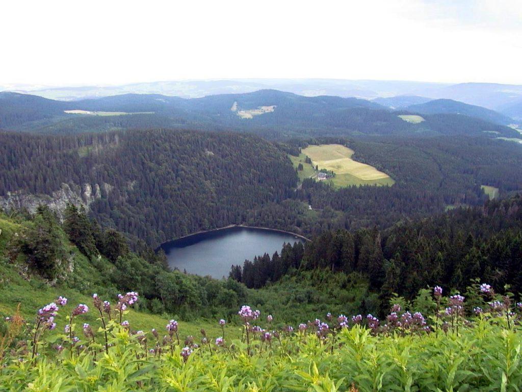 بحيرة فيلدزيه