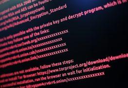 Die größten Bedrohungen im Netz 3