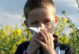 Allergieauslöser von Kindern mit Asthma fernhalten